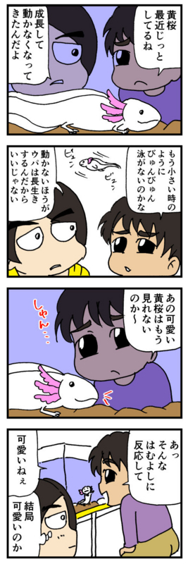 nomi4-20170425-02
