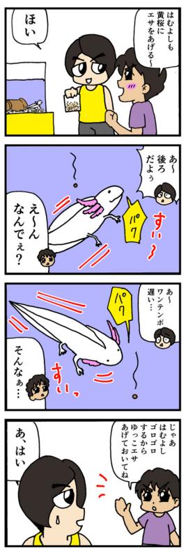 nomi4_161001-06
