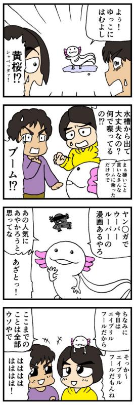 nomi4-170401-01