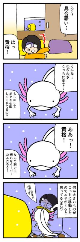 nomi4_161001-01