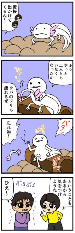 nomi4_170111-02