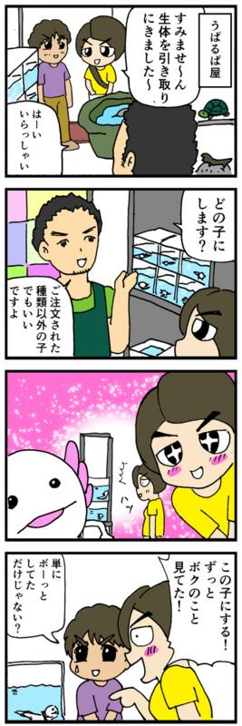 nomi4_160910-03