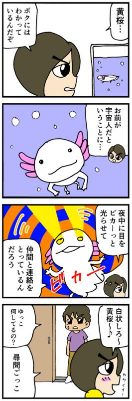 nomi4_160915-02