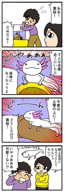 nomi4_161102-02