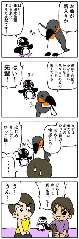 nomi4_160902-04