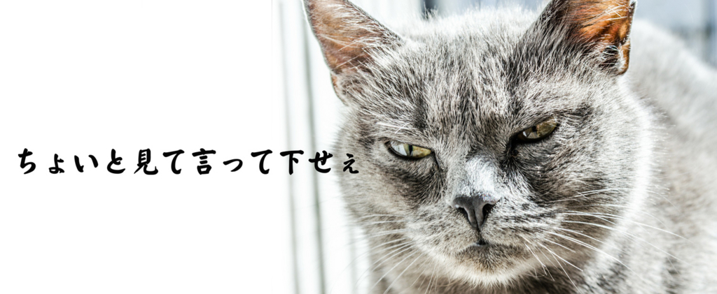 f:id:nomura-randsel:20160706114425j:plain