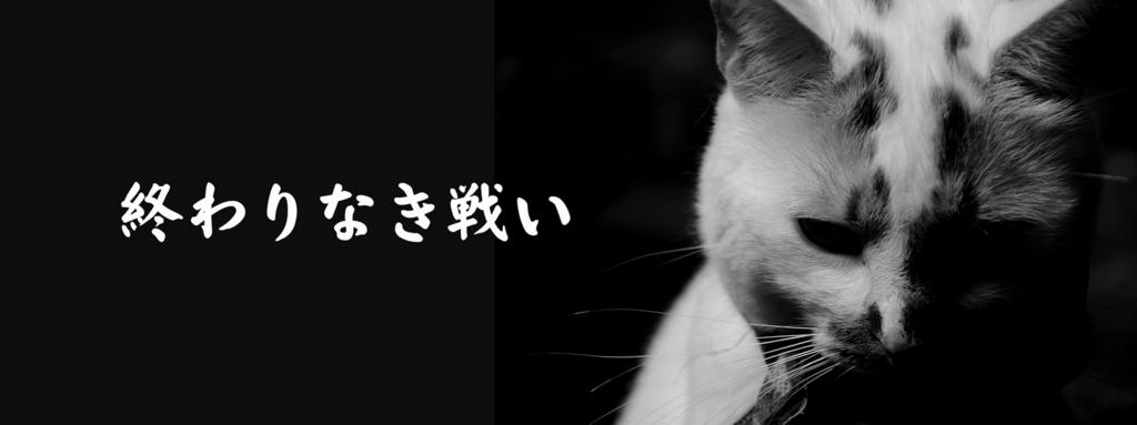 f:id:nomura-randsel:20160706114524j:plain