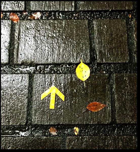 f:id:non704:20171016165329p:image:w300:left