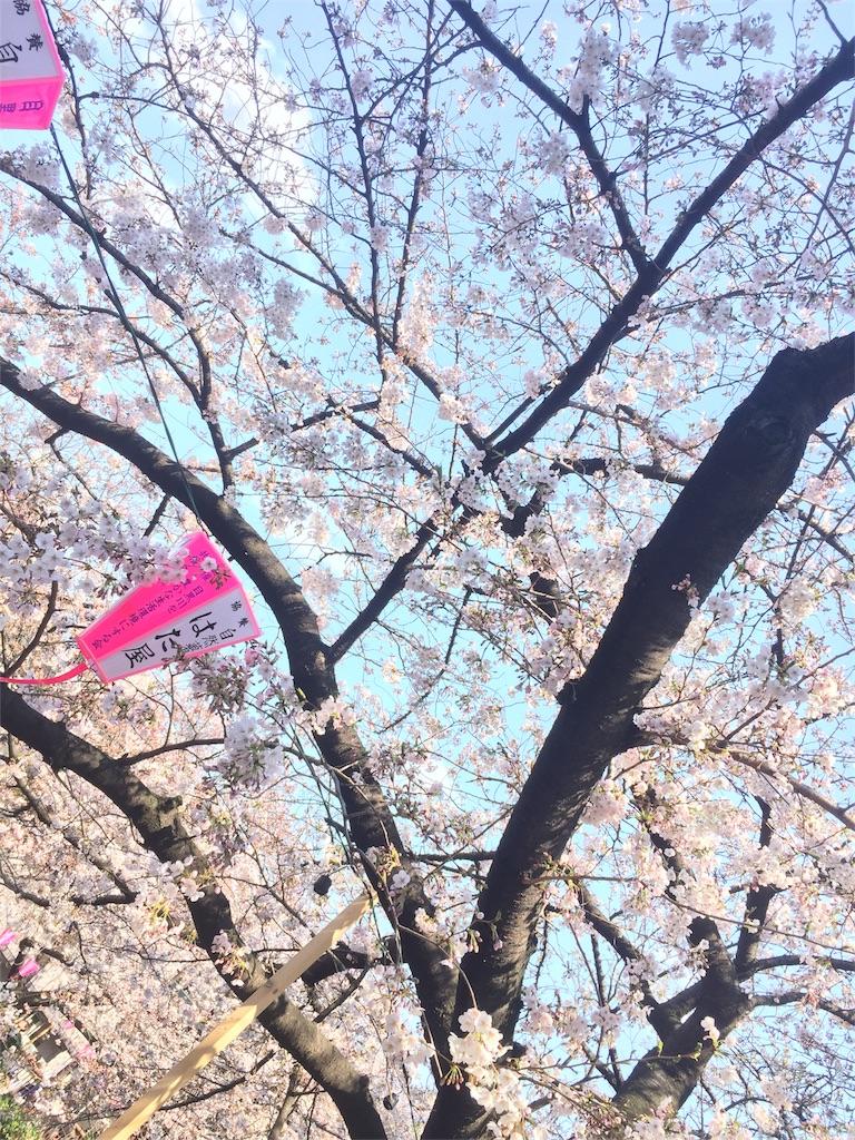 f:id:non_hoshimiya:20170404235148j:image