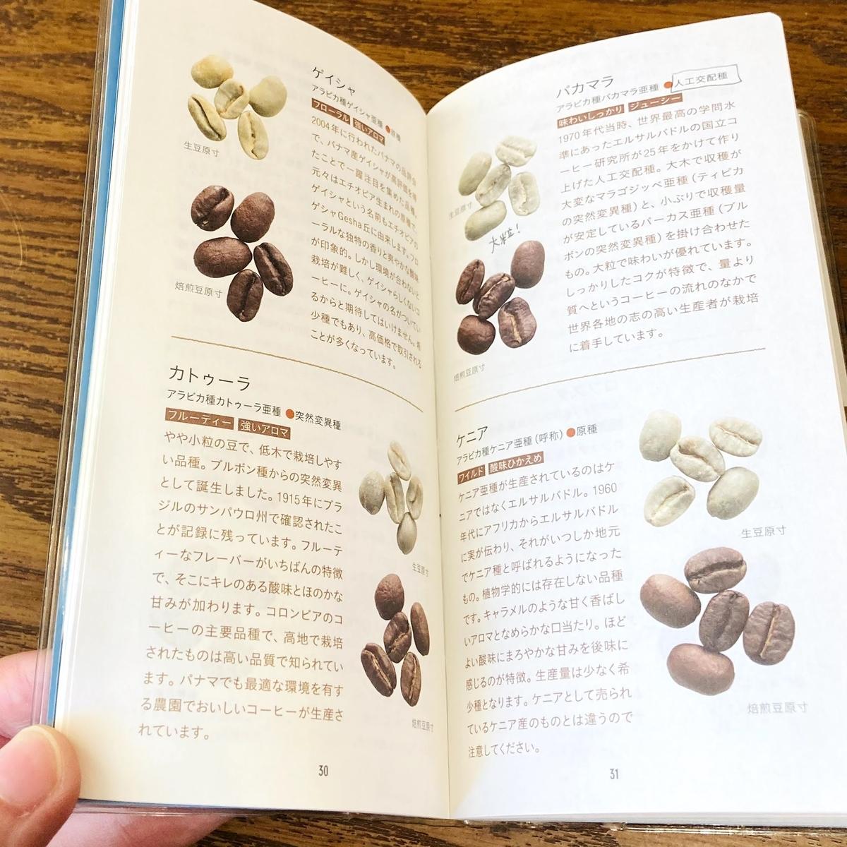 f:id:nonbiri-coffee:20201117150213j:plain