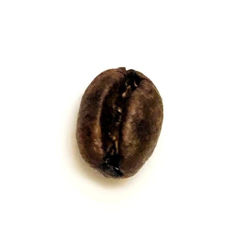 ピーベリー(丸豆)