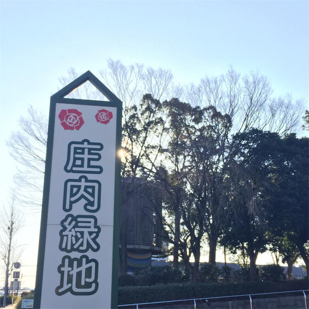 f:id:nonbiri_kamesan:20180218183231j:image