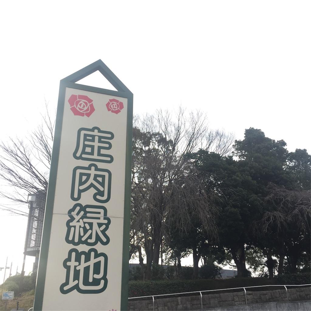 f:id:nonbiri_kamesan:20180304152818j:image