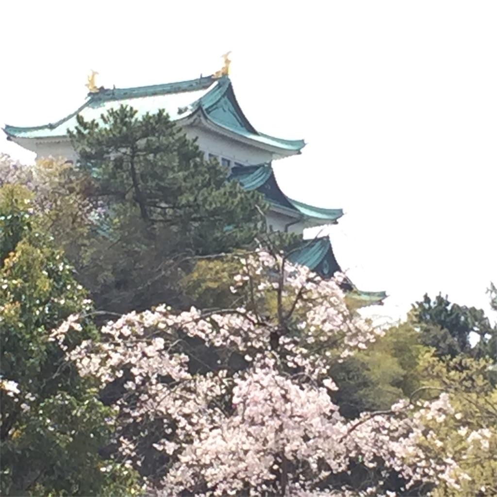 f:id:nonbiri_kamesan:20180403201208j:image