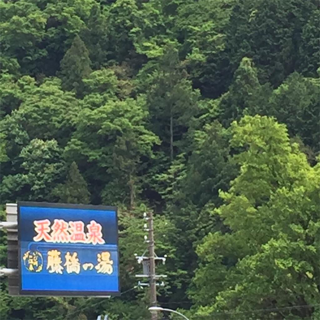 f:id:nonbiri_kamesan:20180507163109j:image