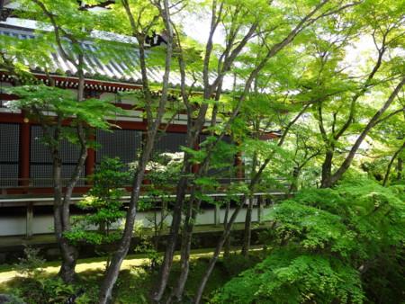 f:id:nonchiko:20140530220745j:image