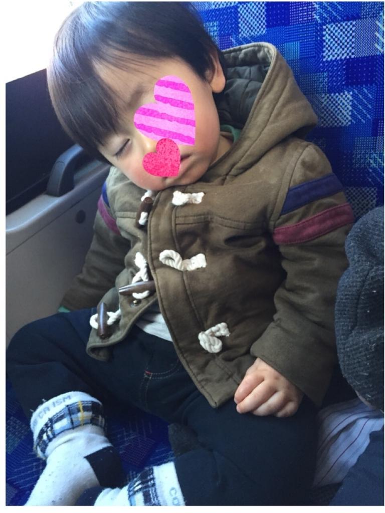 f:id:nonchikosodate:20180102211818j:plain