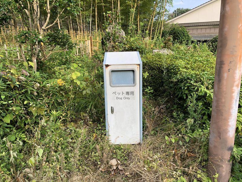 f:id:nonkorokazoku:20190816172731j:plain