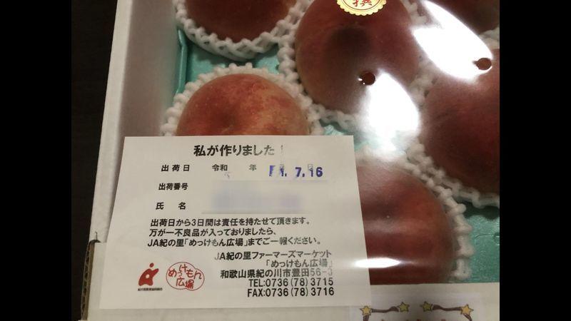 f:id:nonkorokazoku:20190816173844j:plain