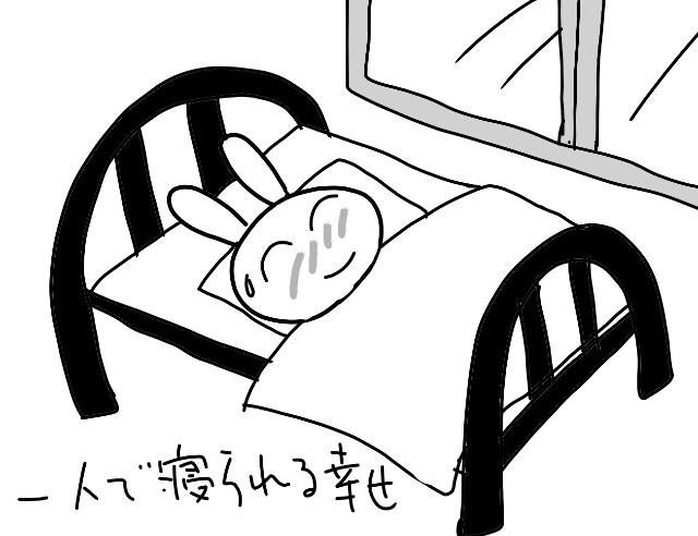 f:id:nonousagi:20171116004129j:image