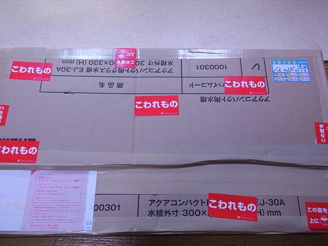RIMG0001_20121225133419.jpg