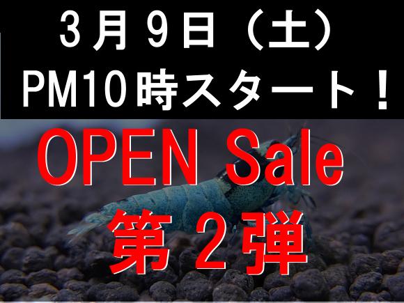 OPENsale2.jpg