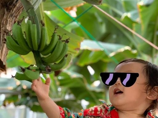 バナナ大好き2歳児
