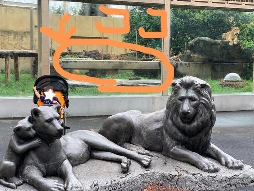 東武動物公園ライオン