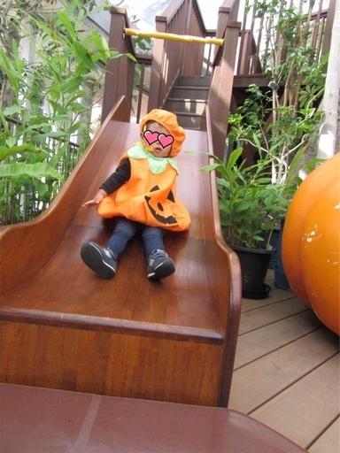 夢の島熱帯植物館の滑り台