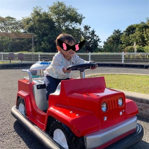 寺山公園のミニカー