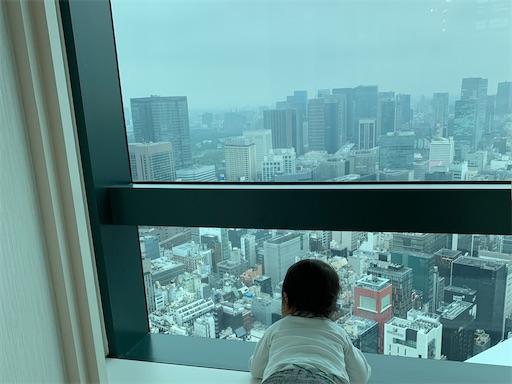 汐留シティセンターからの眺め