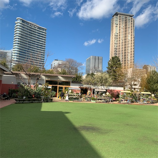 シェアグリーン南青山の芝生広場