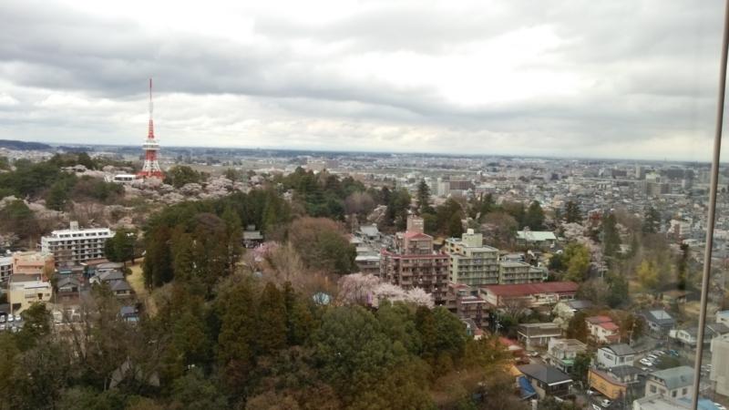 栃木県庁から(1) 左側には高さ89mの宇都宮タワー