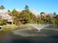 [富山県]2016.4.5高岡市・高岡古城(こじょう)公園