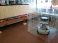 JR城端駅待合室。列車間隔長いからありがたい
