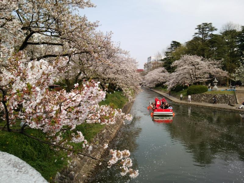 2017.4.14富山市・松川の桜 withB(そればっか)