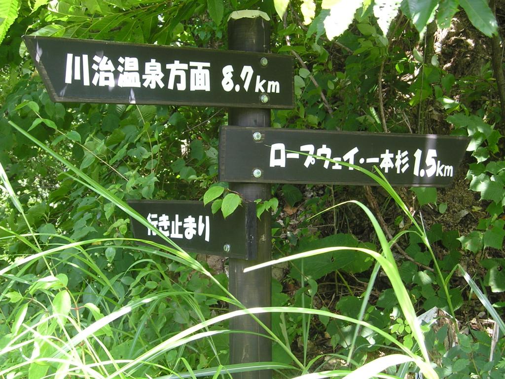 f:id:noramatsu:20170123231948j:plain