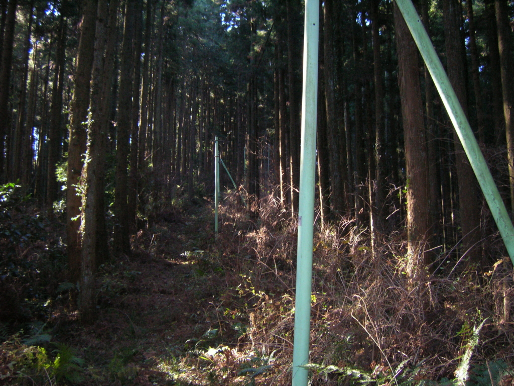 f:id:noramatsu:20170220233029j:plain