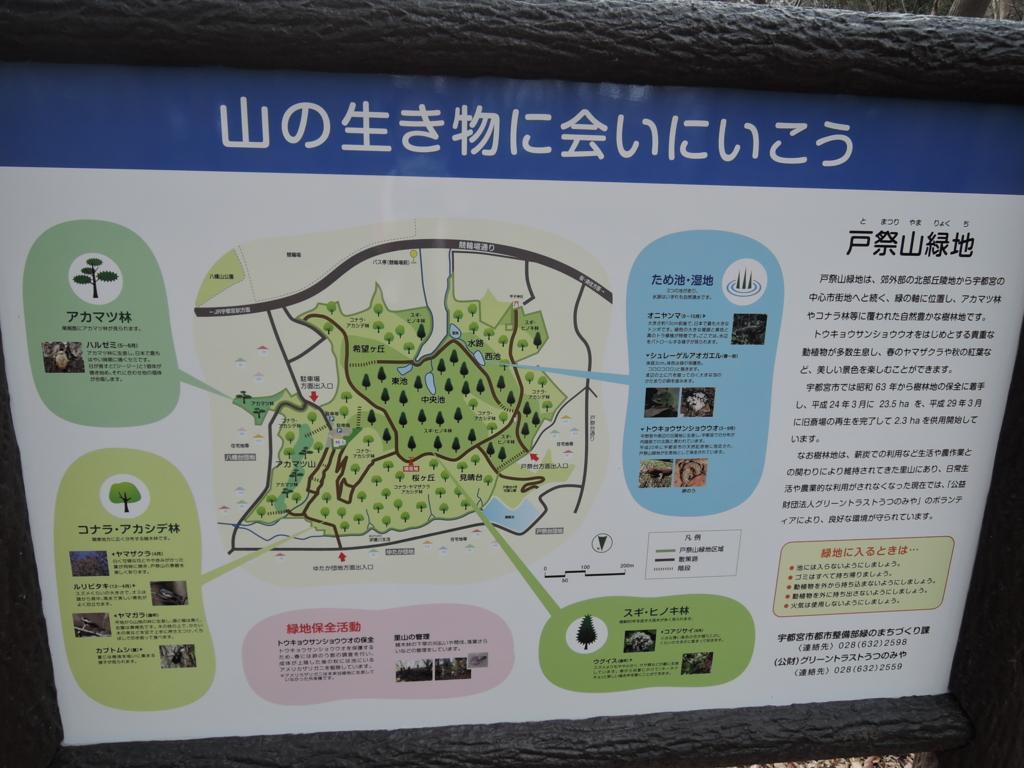 f:id:noramatsu:20170402232904j:plain