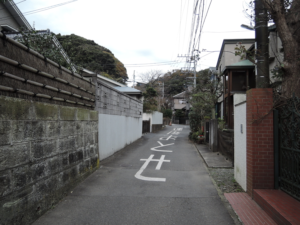 f:id:noramatsu:20190131183047j:plain