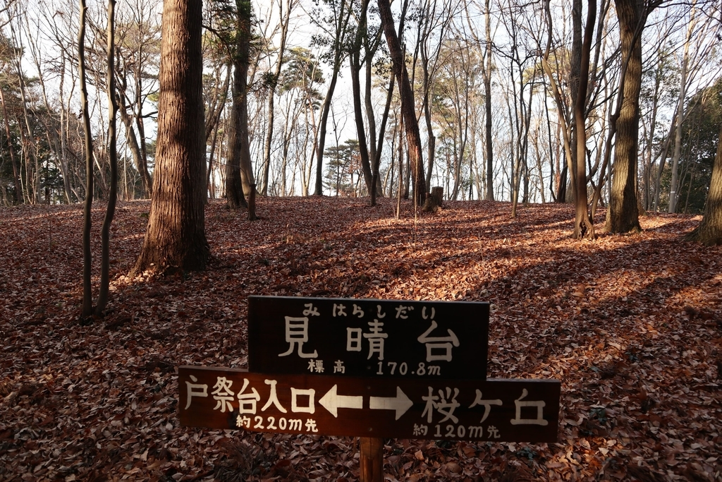 f:id:noramatsu:20190225214934j:plain