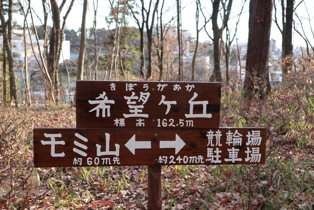 f:id:noramatsu:20190225215331j:plain