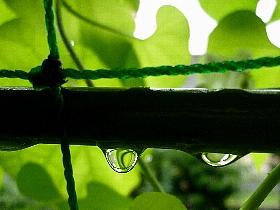 f:id:noraneko222:20120814193812j:image