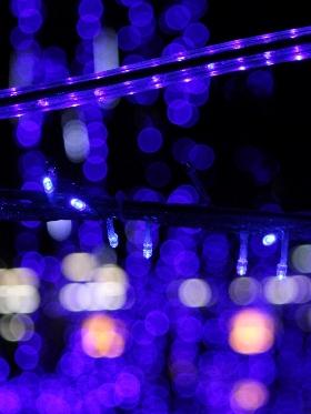 f:id:noraneko222:20121122195724j:image