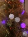 [クリスマスデコレーシ][ラグーナ蒲郡]