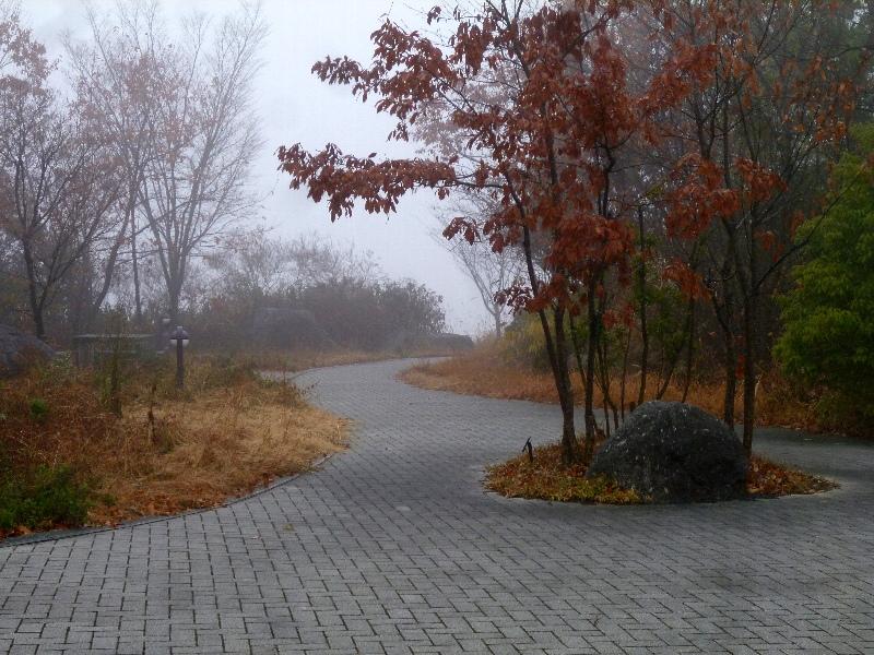 f:id:noraneko222:20121222183251j:image