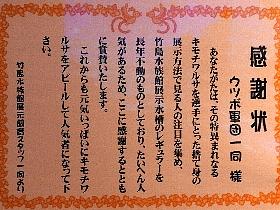 f:id:noraneko222:20170210100455j:image
