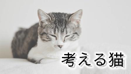 カテゴリ:考える猫
