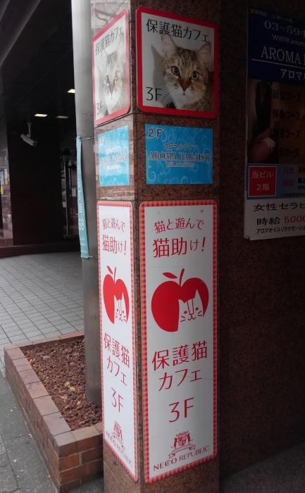 ねこまつりat中野 第1回2018冬(01:ネコリパブリック東京中野店 店外目印看板)