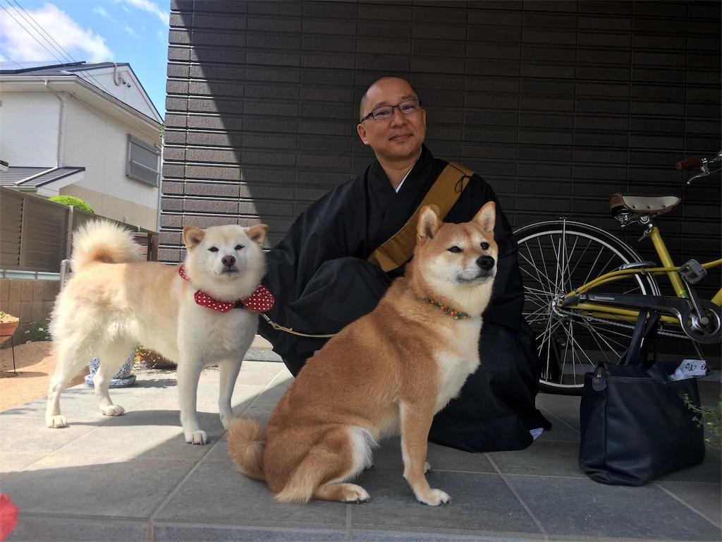 f:id:nori-snow_cyclist3190:20170903191447j:image